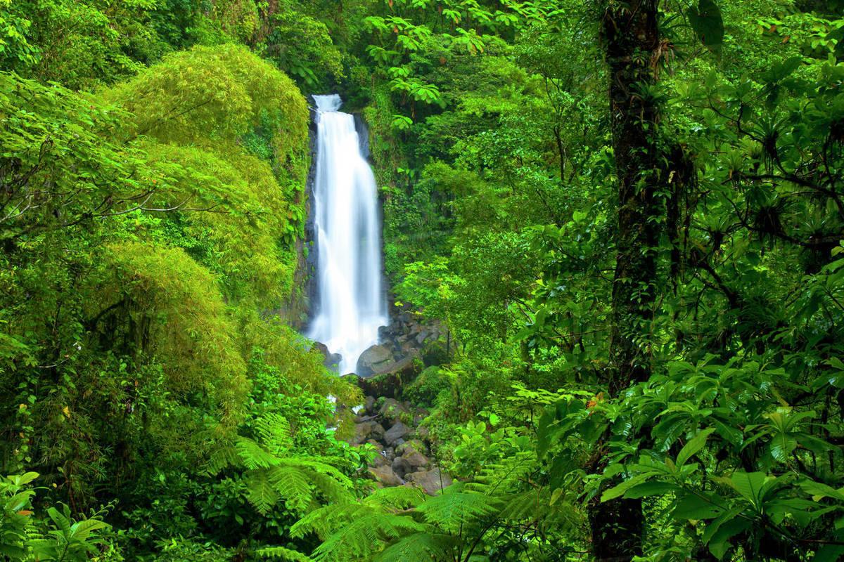 آبشار دوقلوی کشور دومینیکا